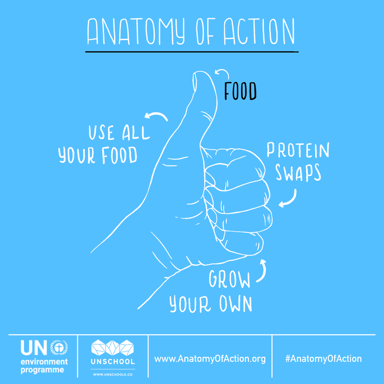 Anatomy of Action - Food