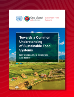 Towards common understanding sustainable food systems